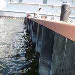 Virginia Shipyard Bulkhead Improvements